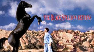 Netflix box art for The Black Stallion Returns