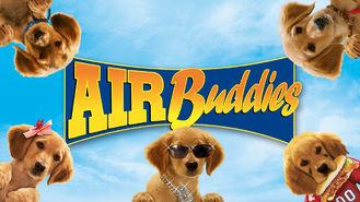 Netflix box art for Air Buddies