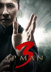 Ip Man 3 Netflix IN (India)