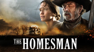 Netflix box art for The Homesman