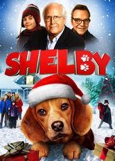 Shelby Netflix EC (Ecuador)