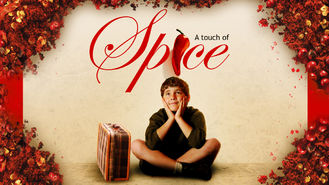 Netflix box art for A Touch of Spice