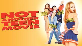 Netflix box art for Not Another Teen Movie