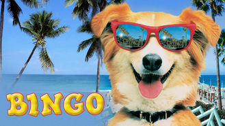 Netflix box art for Bingo