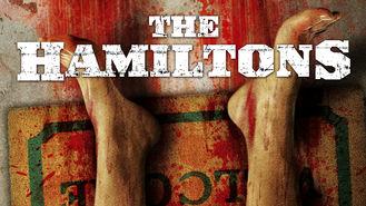 Netflix box art for The Hamiltons
