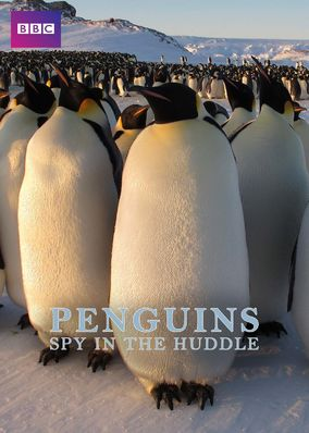 Penguins: Spy in the Huddle - Season 1