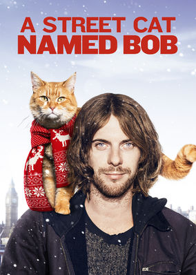 Box art for A Street Cat Named Bob